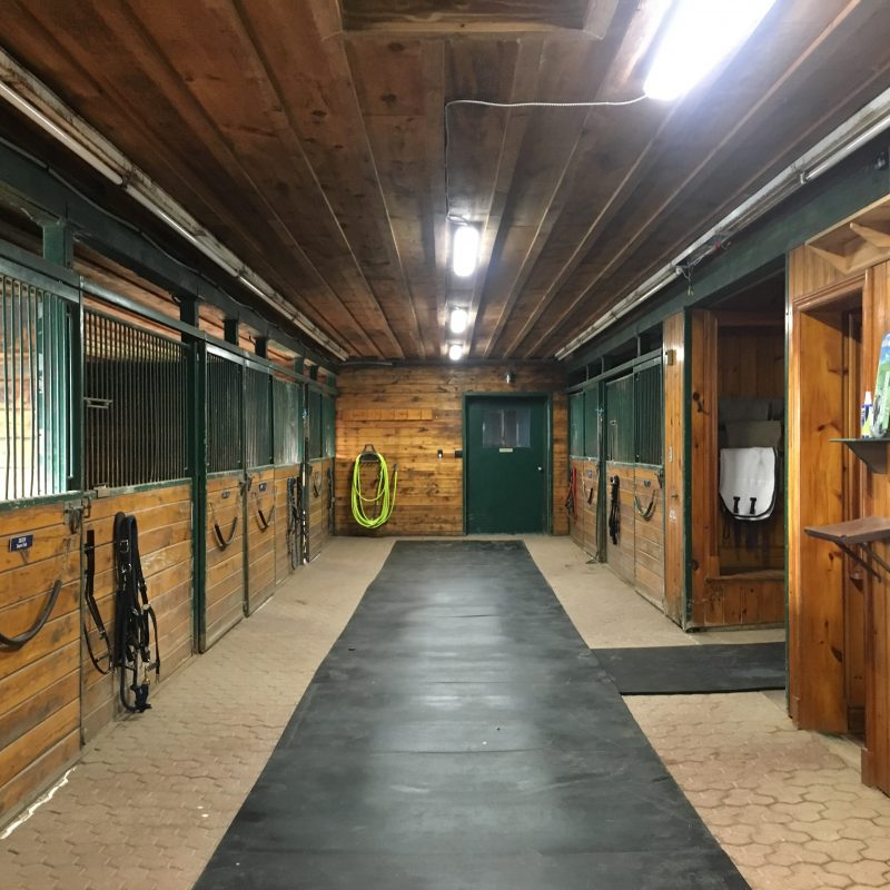 Welcome... to the new Hunter Green Equestrian Centre